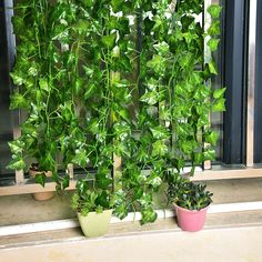 Outus 12 Pack Artificial Greenery Ivy Vine Leaves Garland for Wedding Party Garden Wall Party Decoration Rock Plants, Ivy Plants, Foliage Plants, Artificial Plants And Trees, Artificial Plant Wall, Walled Garden, Garden S, Party Garden, Greenery Garland