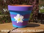 Paint flower pots