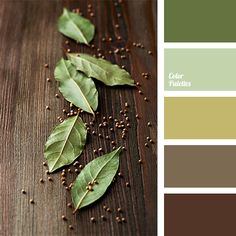 """dusty"" green, brown and mustard, color of bay leaf, color selection, designer palettes, green and brown, mustard, mustard-green, muted shades of brown, olive, palette for designers, salad green, shades of brown, shades"