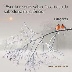 Escuta e serás sábio. O começo da sabedoria é o silêncio