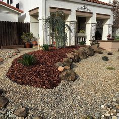 Another well landscaped drought tolerant yard in Vacaville!  Be Green  Save Blue#solanosaveswater #solanocounty #keepsavingca #landscape #landscape_lovers #droughttolerantplants #waterwisegardening #droughttolerant #keepsavingca by solanocash4grass #waterwise #waterwisegardening #drought #droughttolerant