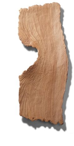 Wooden plate by Noa HANYU, Japan
