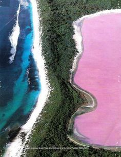 Hillier Lake, Middle Island, Australia.  It is NATURALLY pink.  Want to see that form my eyes. Looks so beautiful.