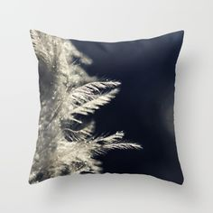feather+Throw+Pillow+by+Ingrid+Beddoes+-+$20.00