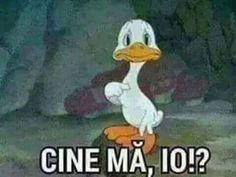Nu io te am blocat Funny Images, Funny Pictures, Photos Tumblr, Funny Moments, Really Funny, Cringe, Funny Texts, Haha, Disney Characters