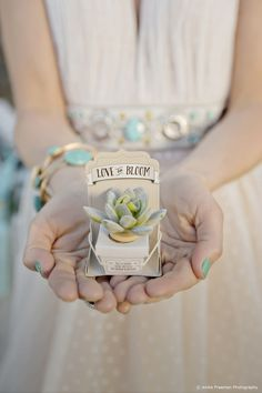Mini succulents in a box for a wedding favour. 10 of our Favourite Wedding Favours 2016 - Succulents