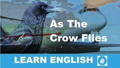 Angol kifejezések egy percben videó lecke. Nézzük meg, mi az angol kifejezés: As the Crow Flies jelentése, és hogyan használjuk a hétköznapi angol beszédben.