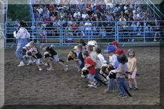 Professional Rodeo Finals at Mountain Springs Arena