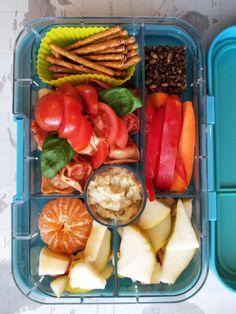 The Kids Healthy Lunchbox Vault - Fi Modderman