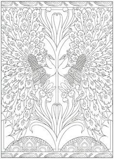 Peacock coloring page 30/31