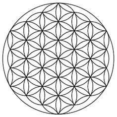 The Flower of Life is the modern name given to a geometrical figure composed of multiple evenly-spaced, overlapping circles. They are arranged to form a flower-like pattern with a sixfold symmetry, similar to a hexagon. -> Great tools for light-workers.. Flower of Life T-Shirts, V-necks, Sweaters, Hoodies & More ONLY 13$ EACH! LIMITED TIME CLICK ON THE PIC