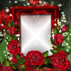 Related image Photo Background Images, Photo Backgrounds, Beautiful Gif, Beautiful Roses, Family Photo Frames, Picture Frames, Flower Boxes, Flower Frame, Creative Flower Arrangements