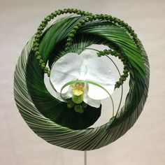 Summer Flower Arrangements, Creative Flower Arrangements, Orchid Arrangements, Simple Flowers, Amazing Flowers, Art Floral, Floral Design, Flower Frame, Flower Art