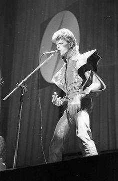 The Bowie Hideout