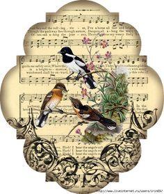 aves + música x gel de transferencia