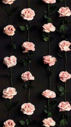Flor Iphone Wallpaper, Wallpaper World, Rose Gold Wallpaper, Cute Wallpaper Backgrounds, Flower Wallpaper, Wallpaper Iphone Vintage, Vintage Flower Backgrounds, Iphone Wallpapers, Iphone Backgrounds