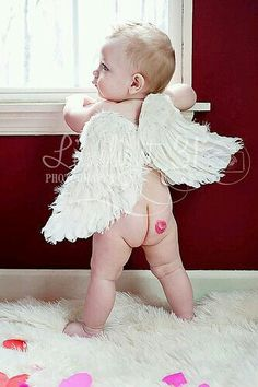 Feather Wings x Kids Toddler Adult Cherub Love Angel Fairy White Marabou Shabby Chic Photo Prop Photography w/ Elastic Straps Valentine Picture, Valentines Day Photos, Valentines Day Baby, Newborn Pictures, Baby Pictures, Children Photography, Newborn Photography, Photography Ideas, Cute Kids