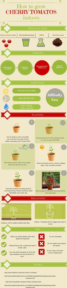 A simple step-by-step guide on how to grow cherry tomatoes at your home. Check out more and become part of a community that cares about the environment and also about the food we eat: www.easygrow.me