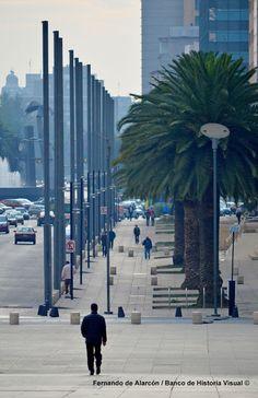 Avenida Juárez. / Juárez Avenue.
