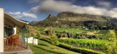 Find Things To Do in Constantia, Cape Town. Popular activities for tourists like Groot Constantia Wine Tasting, Shop for Wine at The Noble Grape, . South African Wine, Cape Town South Africa, Table Mountain, Beach Tops, Trip Advisor, The Good Place, Things To Do, Surfing, National Parks