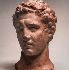 Alexander the Great Head of a youth (fragment of a statuette). The Immortal Alexander The Great Hermitage Amsterdam Greek History, Ancient History, Hermitage Amsterdam, Alexandre Le Grand, Art Connection, Mycenae, The Lost World, Alexander The Great, Classical Art