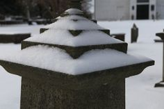 A close up shot of the snow