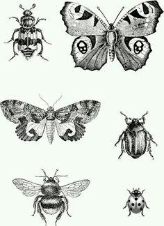 Tattoo P&B