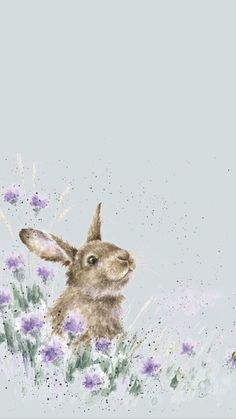 Rabbit Phone Wallpaper