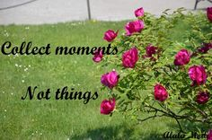 Collect moments not things #18