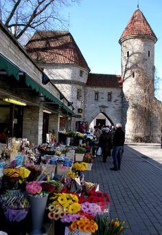 Tallinn, Viru Street , flower market at Viru gates