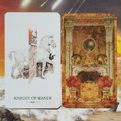 """""""Fun story: i couldn't choose a deck so i decided to do a double daily draw. This is the result: 2 knights of wands/staves... that's like fire x 4!…"""""""