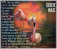 Evening Greetings, Meet U, Goeie Nag, Good Morning, Bible Verses, Teen, Animals, Afrikaans, Bom Dia