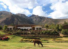 Tunupa Valle Sagrado, Urubamba - Peru
