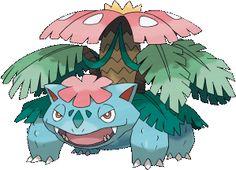 Pokémon X & Y - Mega Venasaur
