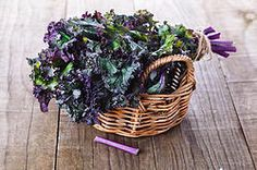 Why Should We Eat Raw & Dehydrated Kale?