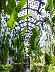 hotel de luxe The Siam Hotel: An Art Deco Urban Sanctuary in a Lush Setting - Bangkok, Thailand Spa Design, Home Design, Landscape Architecture, Landscape Design, Sustainable Architecture, Residential Architecture, Riverside Pool, The Siam Hotel, Resorts