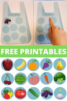 Fruit and Vegetable Sorting Activity for Toddlers and Preschoolers