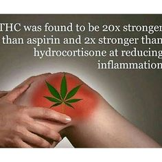#THC for pain relief.  #MaryJaneMinded Go follow my Health & Fitness pages  @fitbymaryjane  @fit4yoursoul