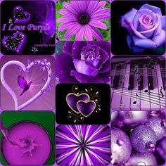 Purple Reign, All Things Purple, Color Combos, Favorite Color, Lavender, Hearts, Collage, Passion, Children