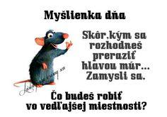 Thought Of The Day, Merlin, Haha, Jokes, Thoughts, Funny, Blog, Husky Jokes, Ha Ha