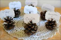WEDDING PINECONE ESCORT Tags Rustic : Set of 10 Woodland Wedding Place Cards, Table Numbers, Rustic, Country, Fall Winter Christmas Theme