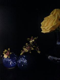 Confabulância florística.