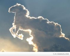 heavenly horse...