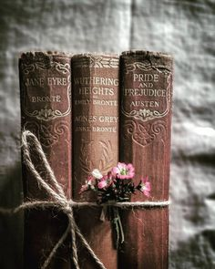 Pretty books bond with flowers. Jane Eyre, Wuthering Heights by Bronte, Pride and Prejudice by Austen Old Books, Antique Books, Vintage Books, Art Antique, This Is A Book, I Love Books, Books Decor, Photos Amoureux, Wuthering Heights