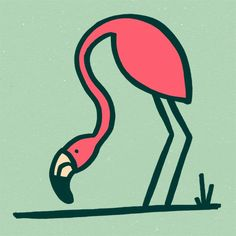 The Birds & The Birds — #5 Flamingo