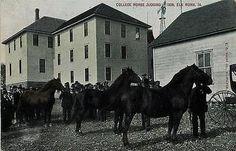 Elk Horn Iowa IA 1908 College Horse Judging Collectible Antique Vintage Postcard