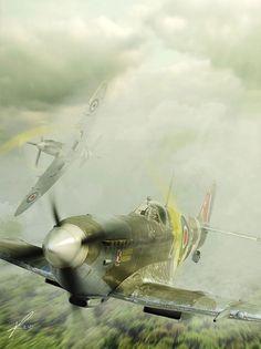 Polish Supermarine Spitfire ~ BFD
