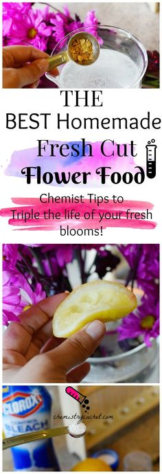 The Best homemade fresh cut flower food. Chemist tips on why it works and triple the life of your fresh blooms! Easy DIY fresh flower food on chemistrycachet.com