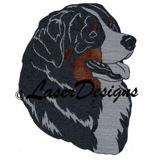embroidery designs bernese mountain dogs | Bernese Mountain Dog Head Silver/Black/Brown Magnet