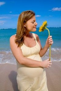 Aromatherapy Tips For Pregnancy